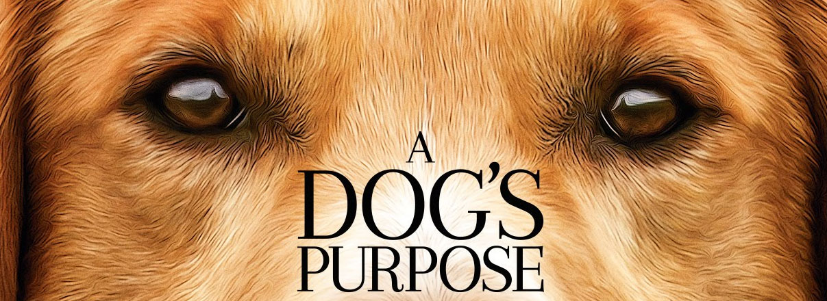 Review: A Dog's Purpose